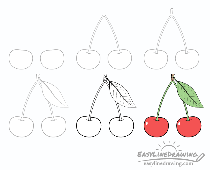 Cherries drawing step by step