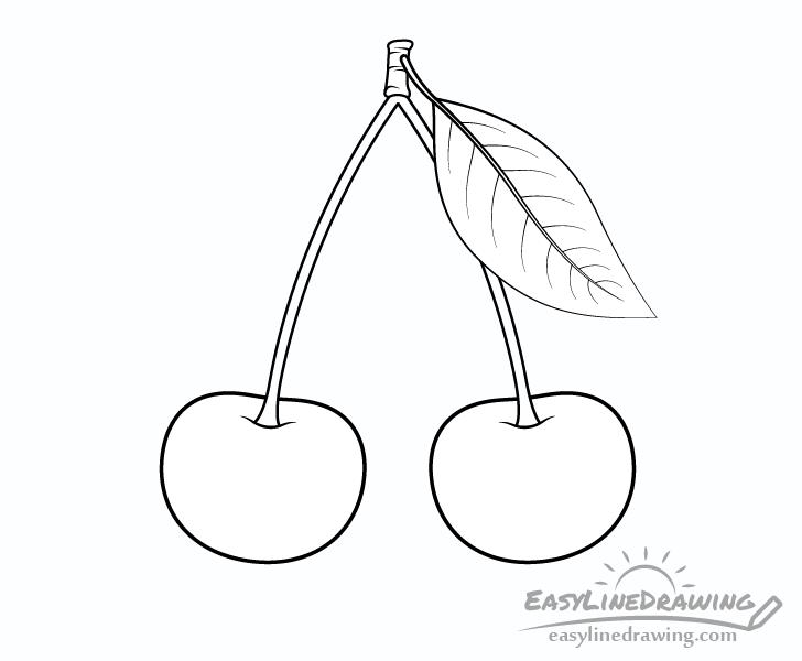 Cherries line drawing