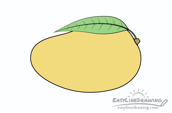 How To Draw A Mango Step By Step Easylinedrawing