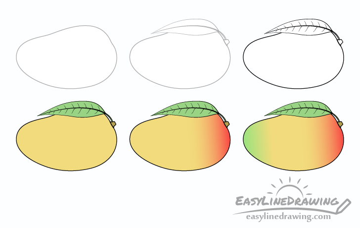 Mango drawing step by step