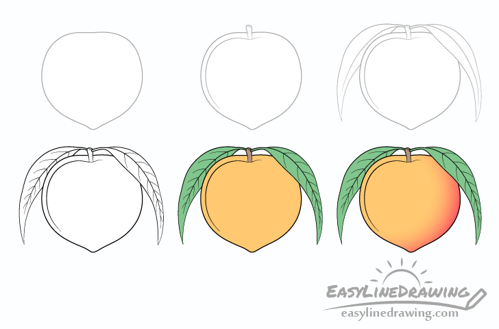 Peach drawing step by step