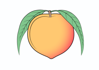 How to Draw a Peach Step by Step