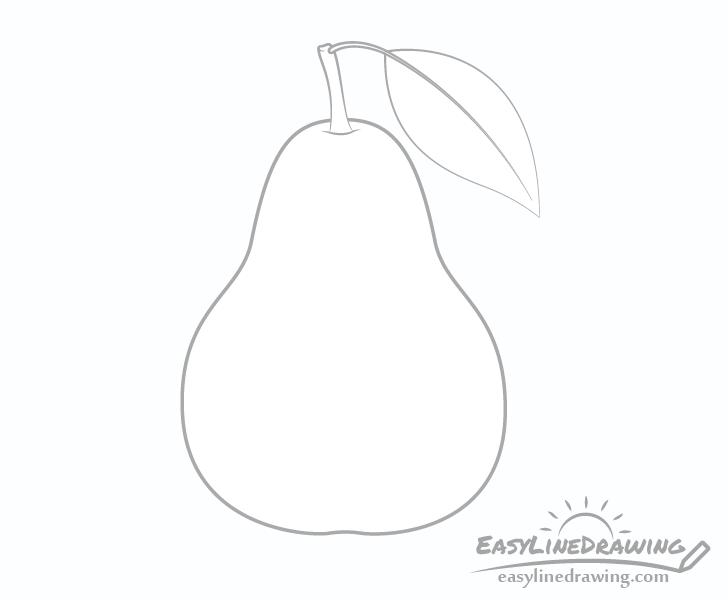 Pear leaf drawing