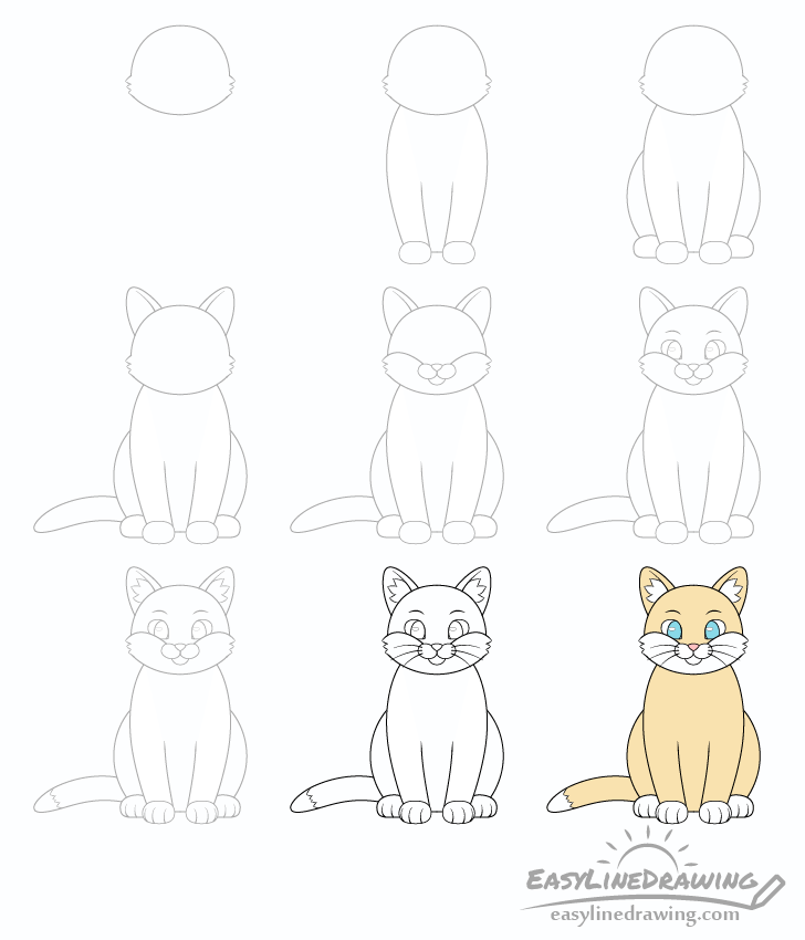 Cat drawing step by step