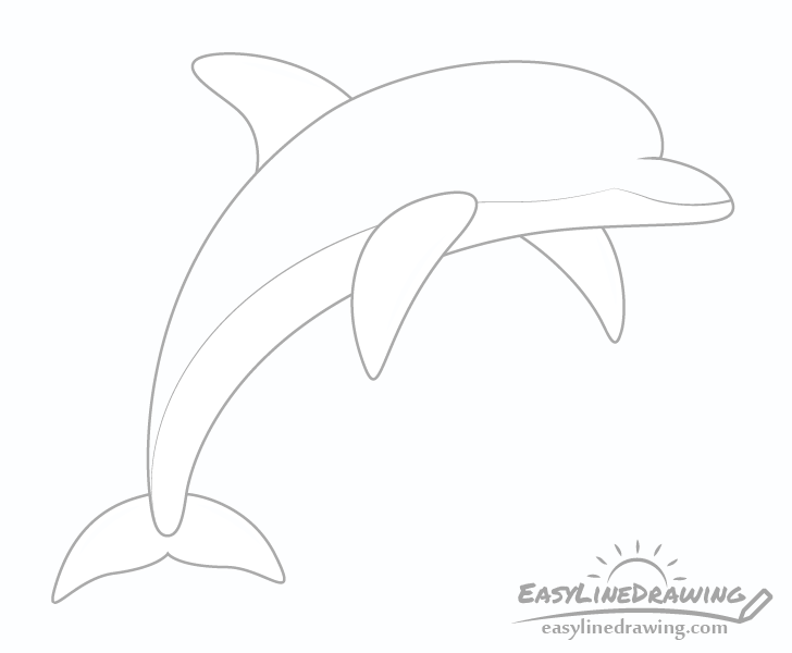 Dolphin top bottom splits drawing
