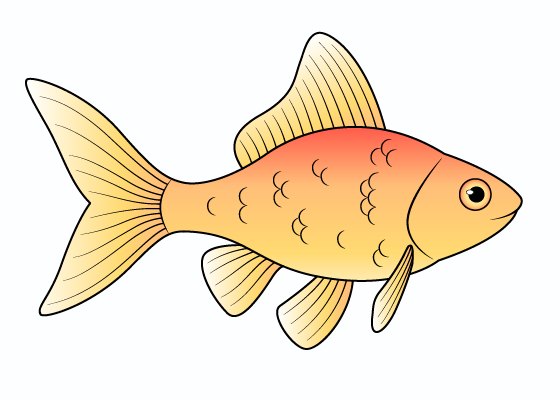 Goldfish drawing tutorial