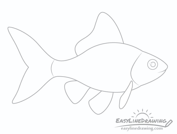 Goldfish eye drawing