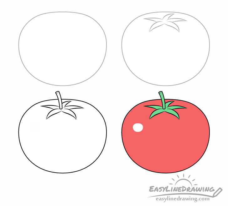 Tomato drawing step by step
