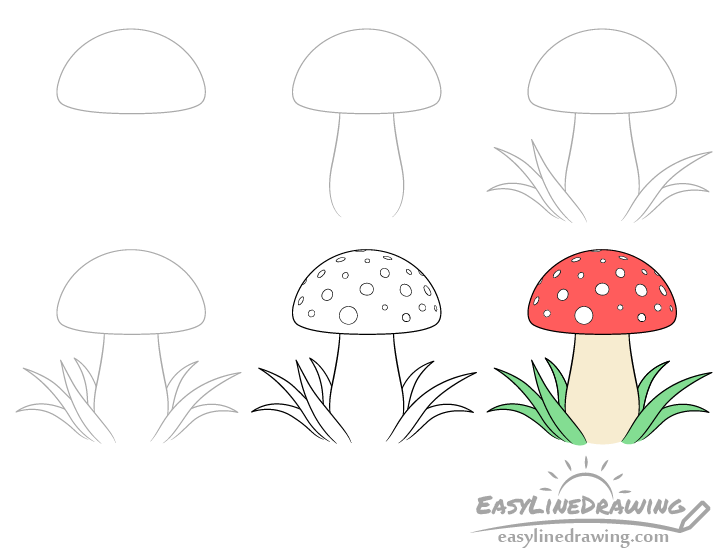 Mushroom drawing step by step
