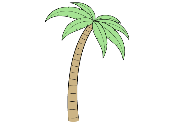 Palm tree drawing tutorial