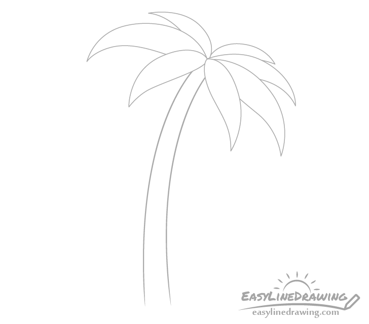 Palm tree trunk drawing