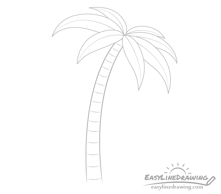 Palm tree trunk stripes drawing