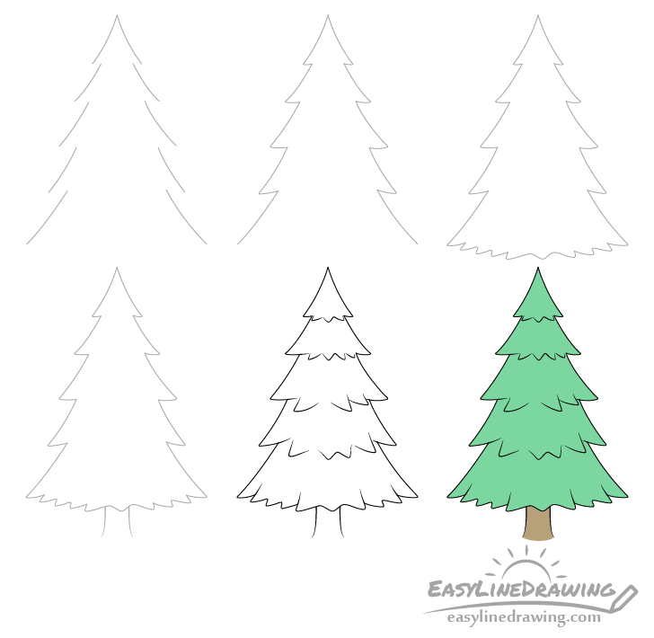 Pine tree drawing step by step