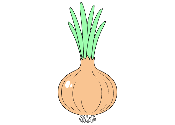 Onion drawing tutorial