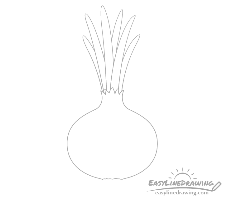 Onion leaves drawing