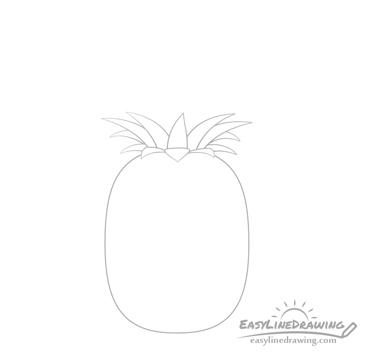 Pineapple crown bottom drawing