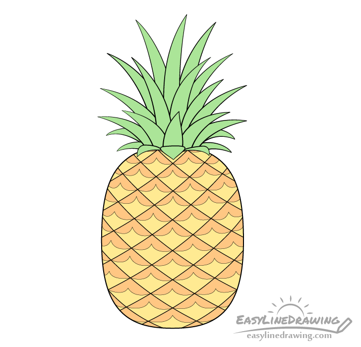 Pineapple drawing