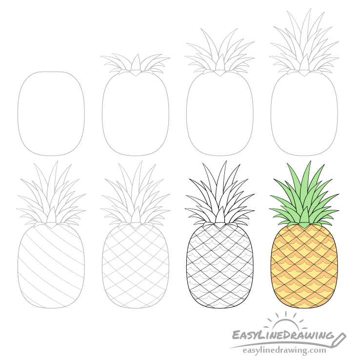 Pineapple drawing step by step