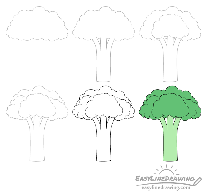 Broccoli drawing step by step