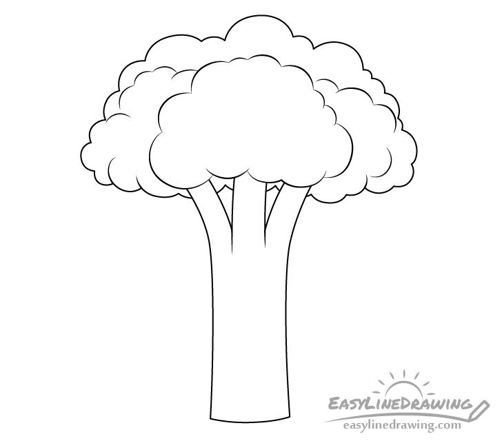 Broccoli line drawing