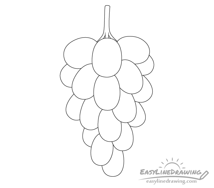 Grapes line drawing