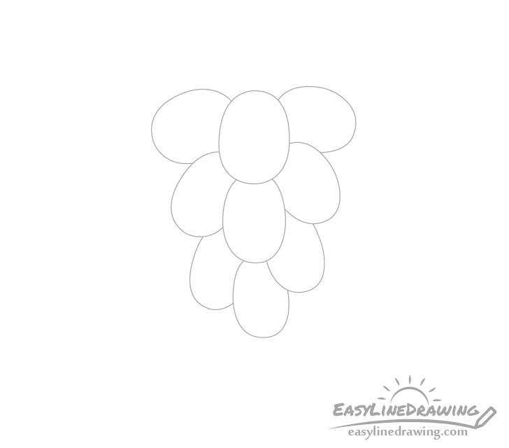 Grapes middle drawing