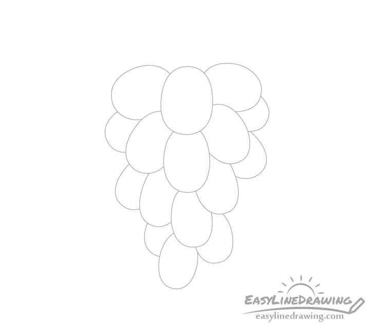 Grapes outer drawing