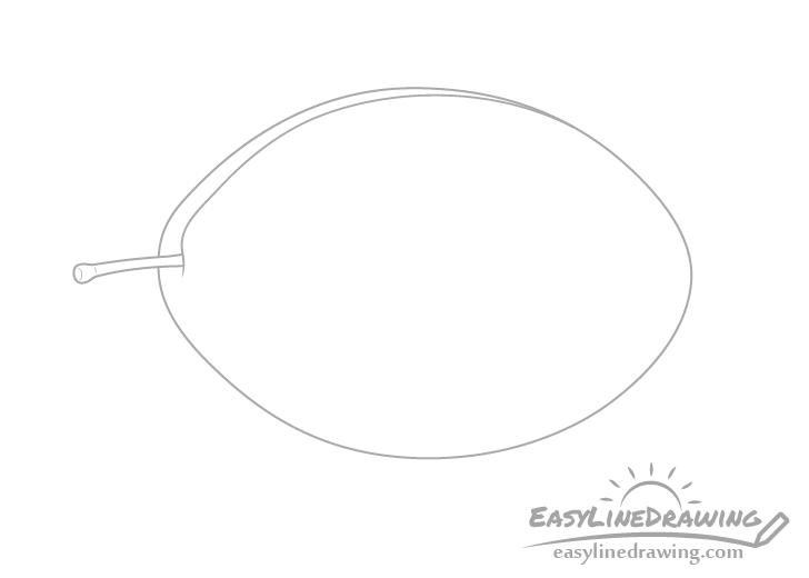 Plum stem drawing