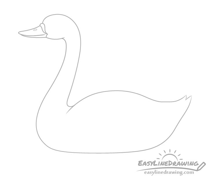 Swan bill drawing