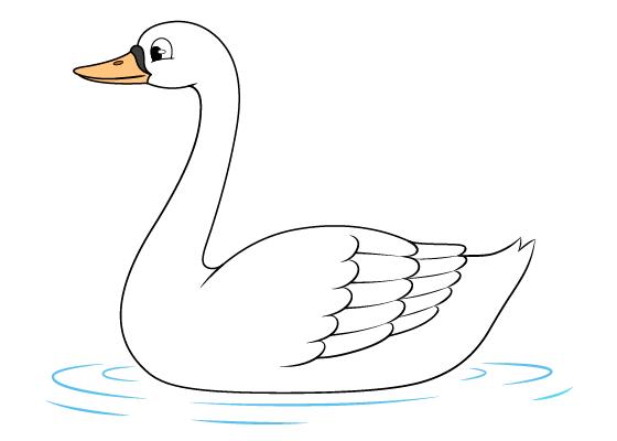 Swan drawing tutorial