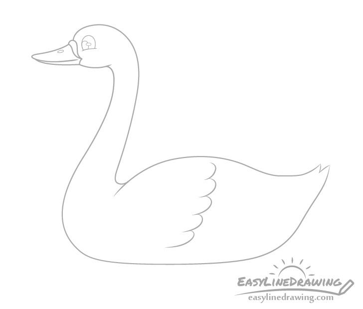 Swan feathers drawing