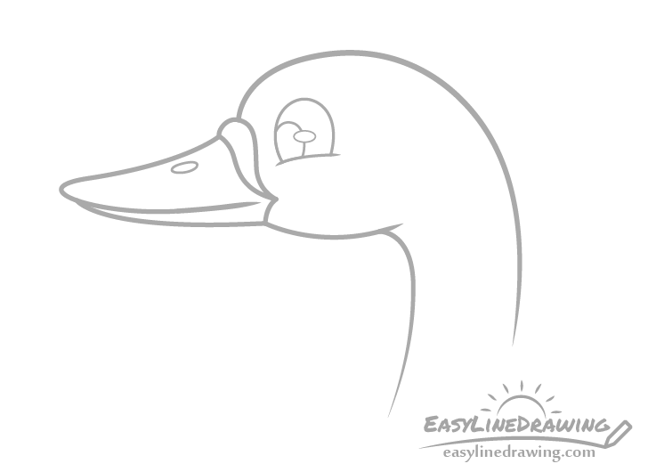 Swan head and face drawing