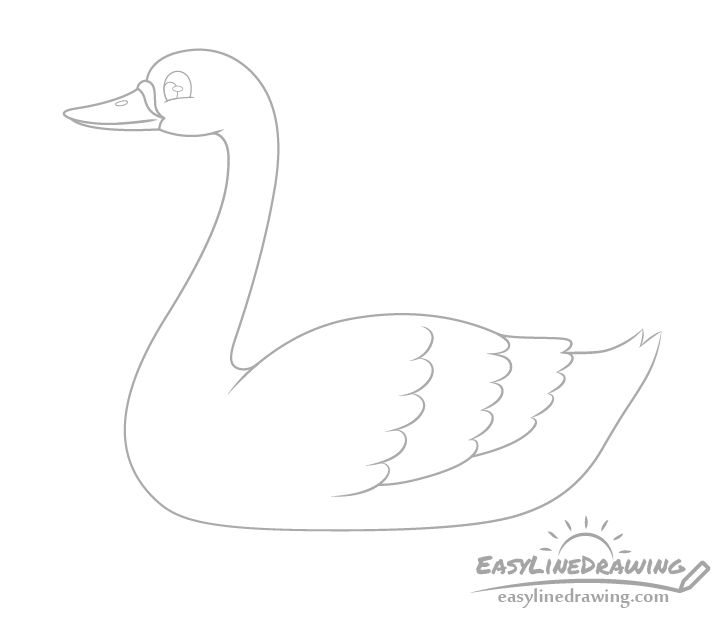 Swan wing feathers drawing