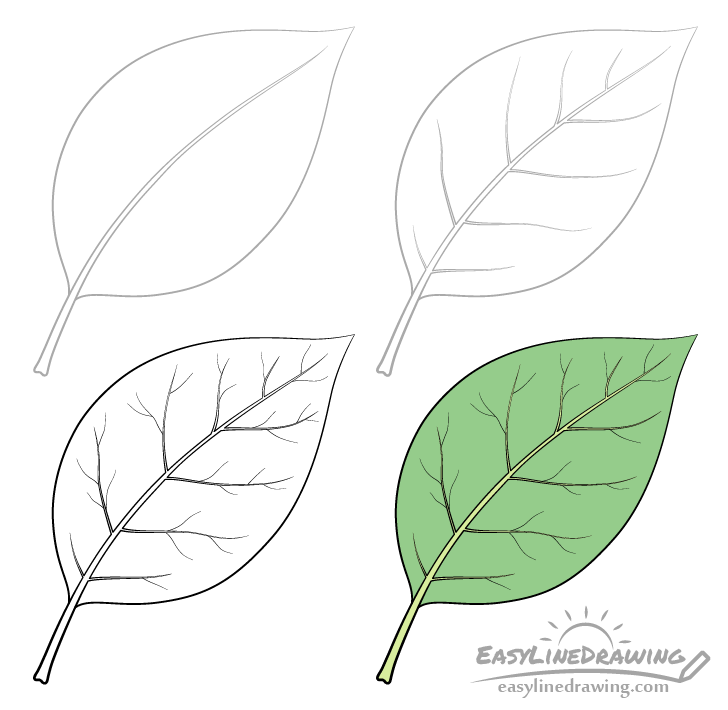 Leaf drawing step by step