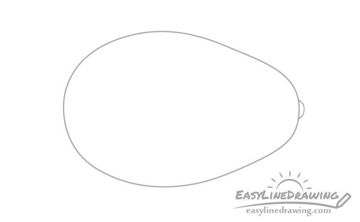 Avocado tip drawing