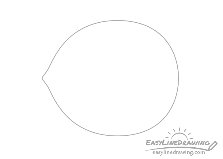 Hazelnut outline drawing