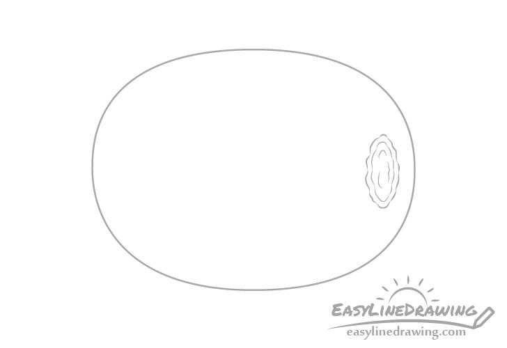 Kiwi details drawing