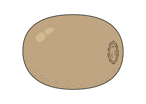 Kiwi drawing tutorial