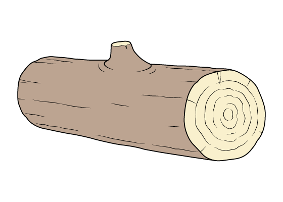 Log drawing tutorial