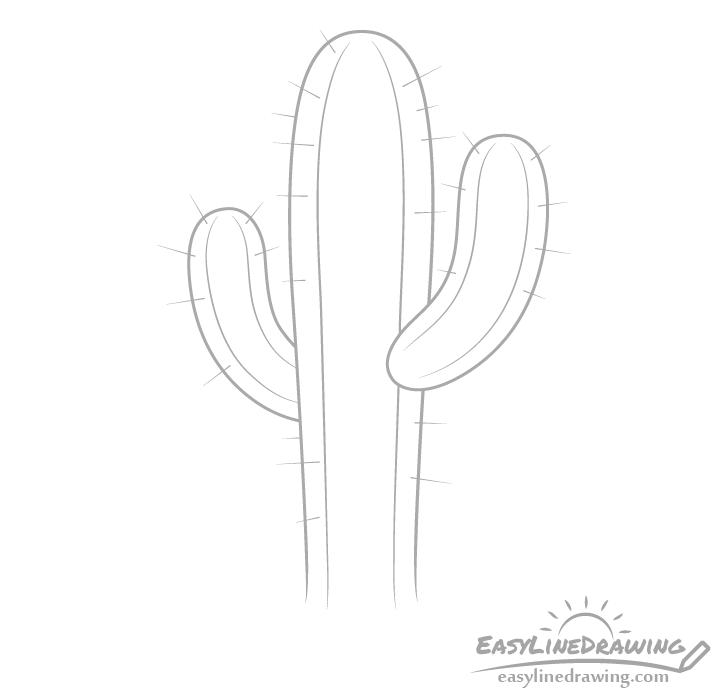 Cactus needles drawing