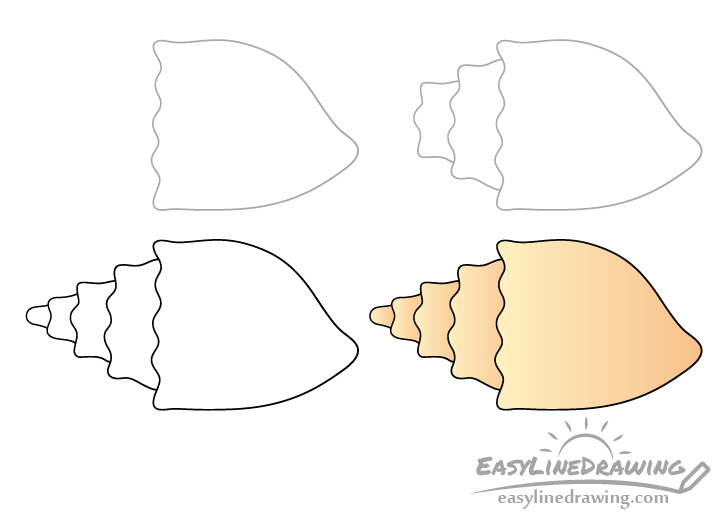 Conch shell drawing step by step