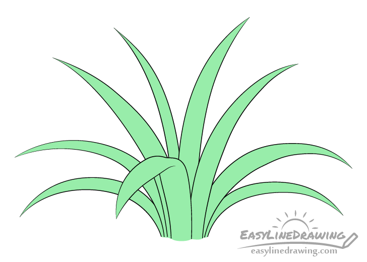 Grass drawing