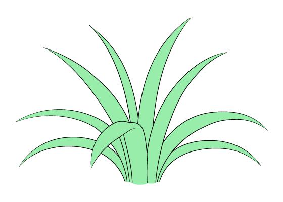 Grass drawing tutorial