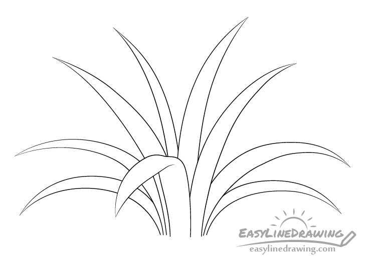 Grass line drawing
