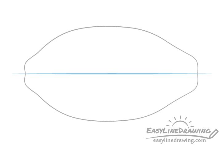 Papaya centerline drawing