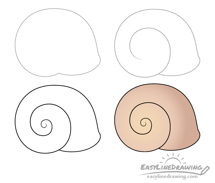 Snail shell drawing step by step