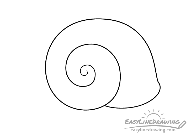 Snail shell line drawing
