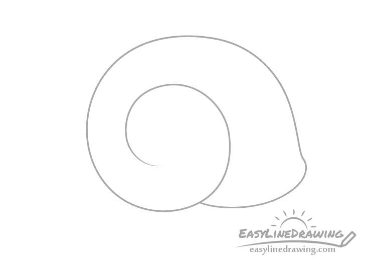 Snail shell spiral drawing