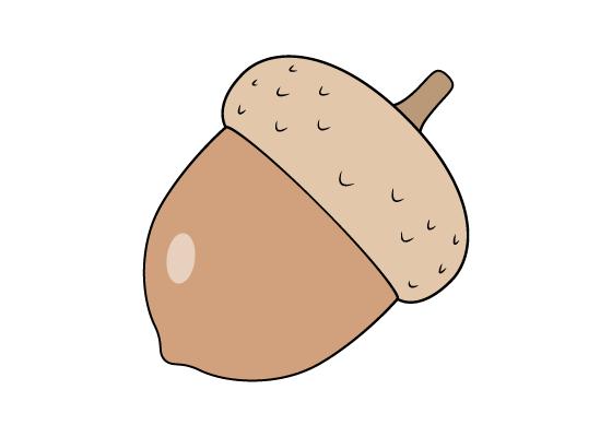 Acorn drawing tutorial