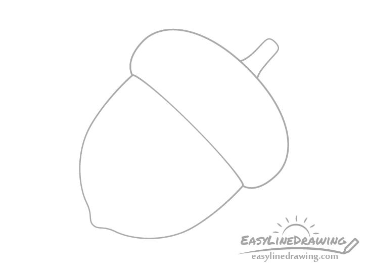 Acorn stem drawing
